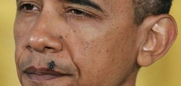 http://boldlions.files.wordpress.com/2014/02/obama_fly_lip2.jpg
